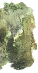 Encre de Catherine Laborde, photo, représentation d'une feuille pouvant laisser songer à un visage