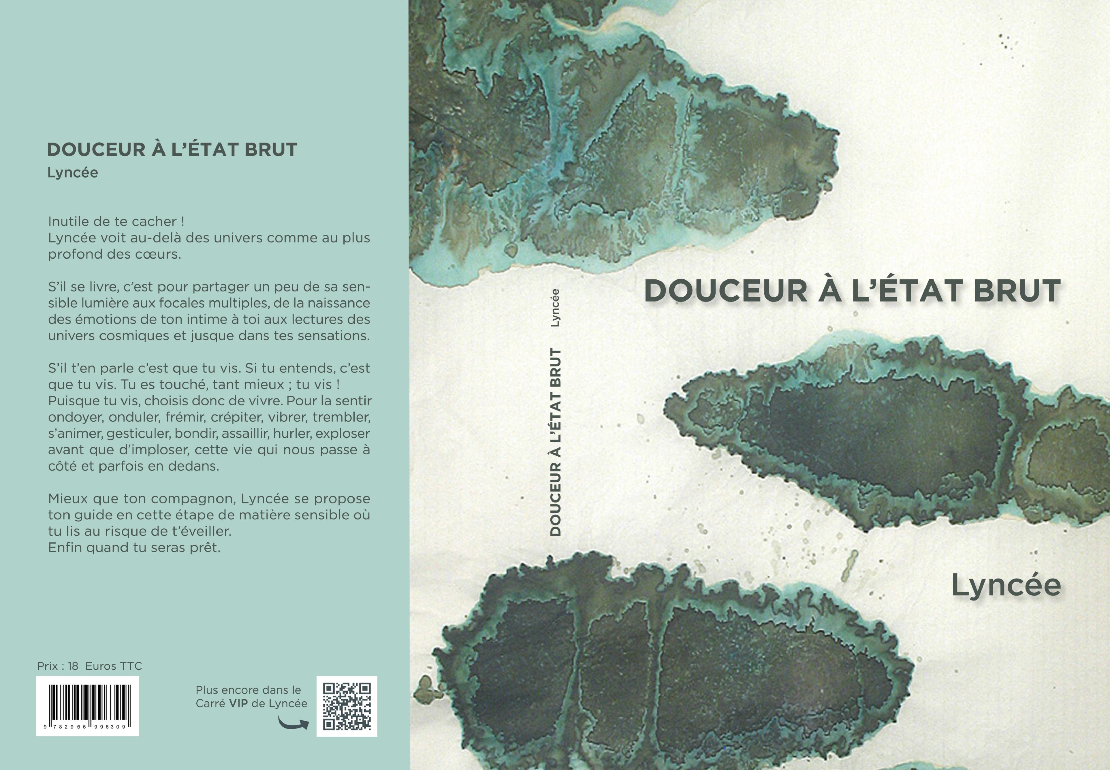 couverture du recueil Douceur à l'État Brut à partir de l'illustration de Catherine Laborde nommée Îlots.